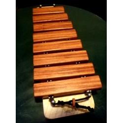 Xylophone découverte